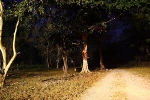 Haunted Delhi Cantonment India