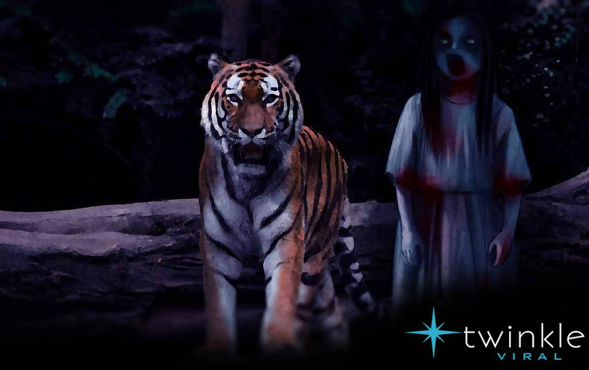 Paranormal Incidents of the Haunted Sundarbans