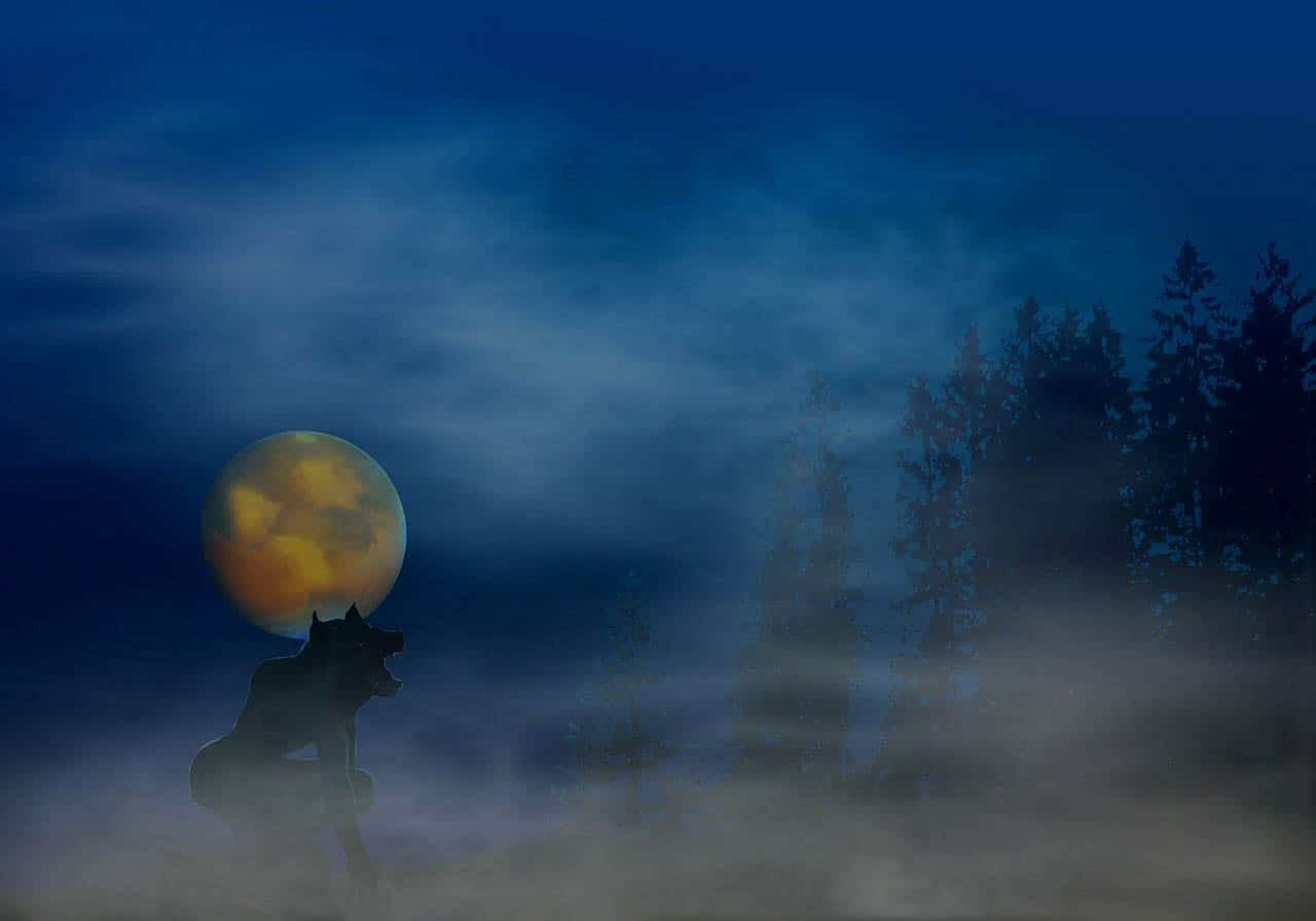 werewolf howling full moon night